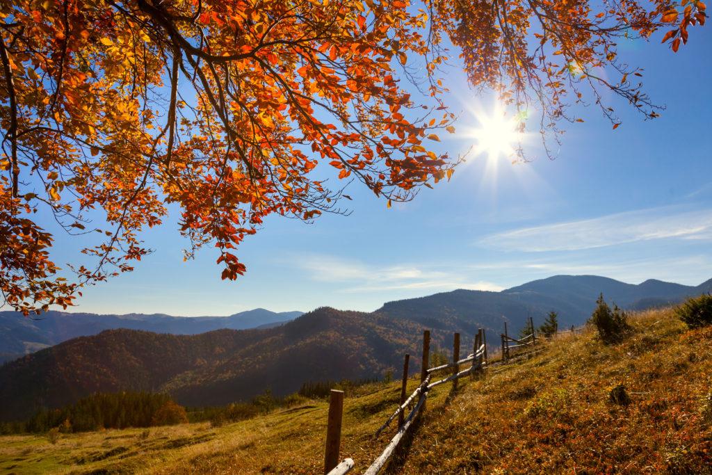 Fall In The Smokies Wallpaper Smoky Mountain Fall Festivals 2018 Gatlinburgthe