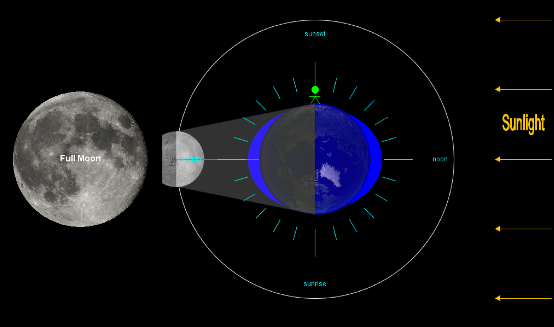 the lunar effect biological tides and human Ocean test #3 you are going to get an a on this exam in jesus name amen study  the side of the earth facing the moon will experience a high tide, while the opposite side of the earth will have a:  tides are influenced by the coriolis effect true t or f: tides are the longest of all ocean waves.