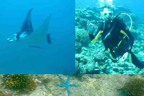 Underwater4