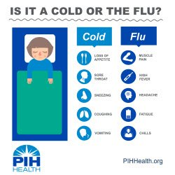 What is the Difference Between a Cold and the Flu? - PIH Health