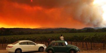 Kebakaran telah membakar beberapa bagian wilayah penghasil anggur California ( GETTY IMAGES)