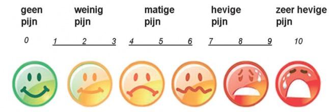 Afbeeldingsresultaat voor pijn schaal