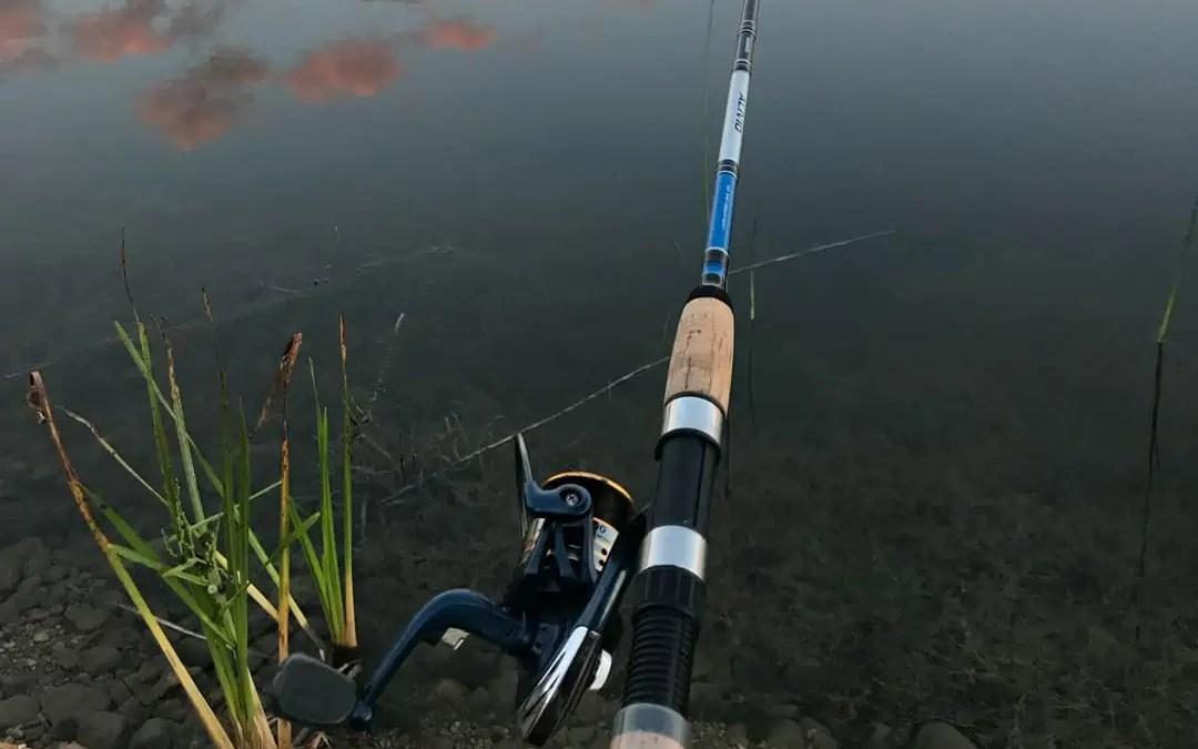 Pike Fishing Rod and Reel
