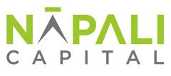 napali logo