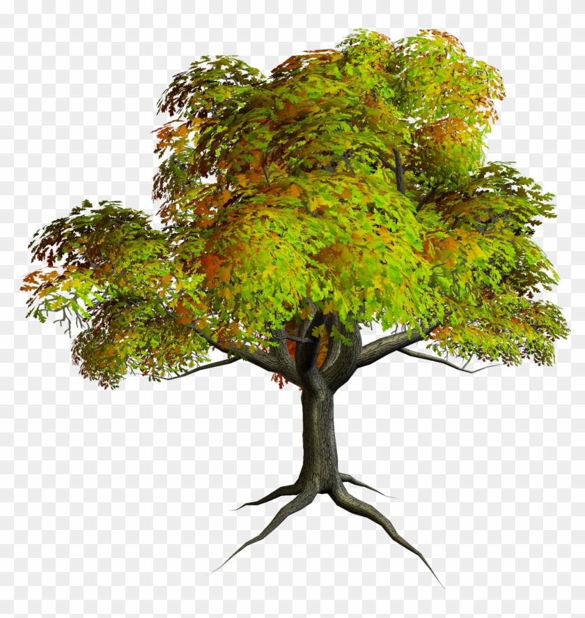 Autumn Png Tree Clipart Photoshop Edit Background Hd Transparent Png 6728 Pikpng