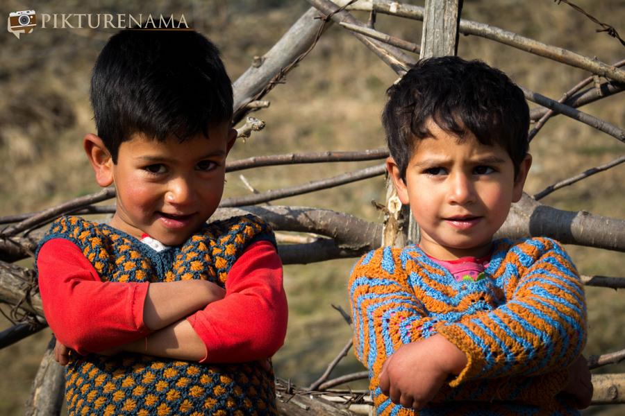 Faces of Kashmir apple orchard 10