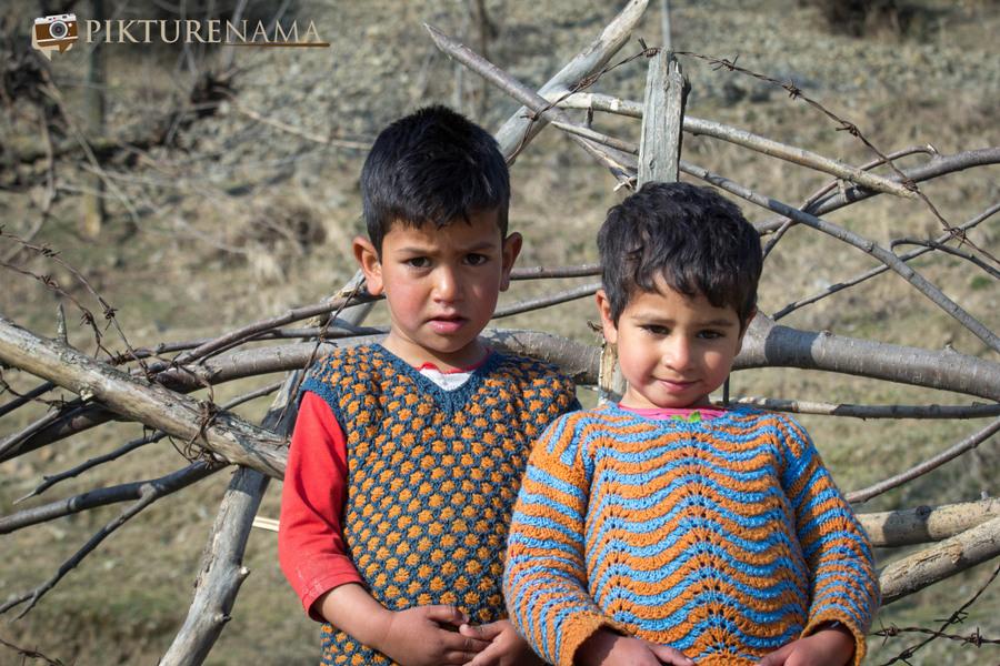 Faces of Kashmir apple orchard 6