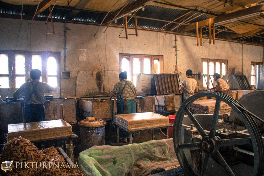 A visit to Jungshi paper factory Thimpu Bhutan