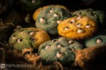 Monster cookies - 2