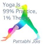 Yoga is 99% doen, 1% theorie