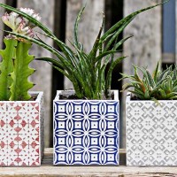Make Beautiful Moroccan Planters In Under 10 Minutes