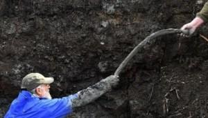 Le mammouth de l'os récemment trouvé dans le Michigan (Etats-Unis)