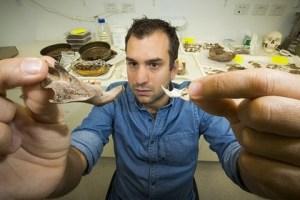 Un investigador muestra algunos de los huesos fósiles de ratas gigantes que se encuentran en Timor Oriental