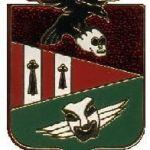 Insigne du 2/11 en 1994