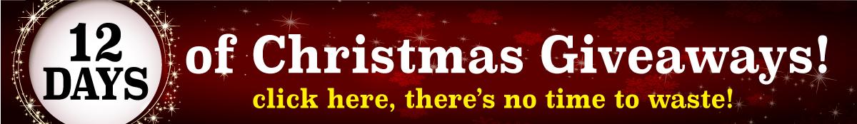 Twelve Days of Christmas Giveaways!_02