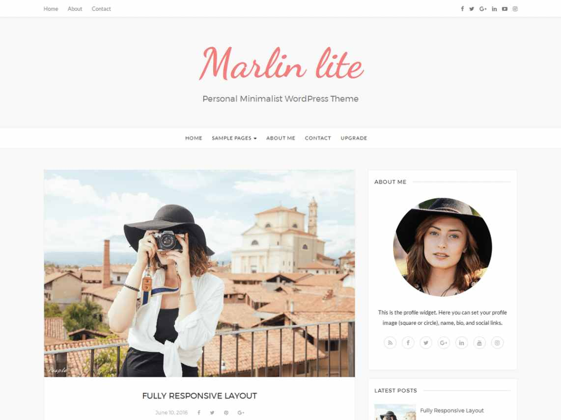 Marlin Lite - free WordPress theme