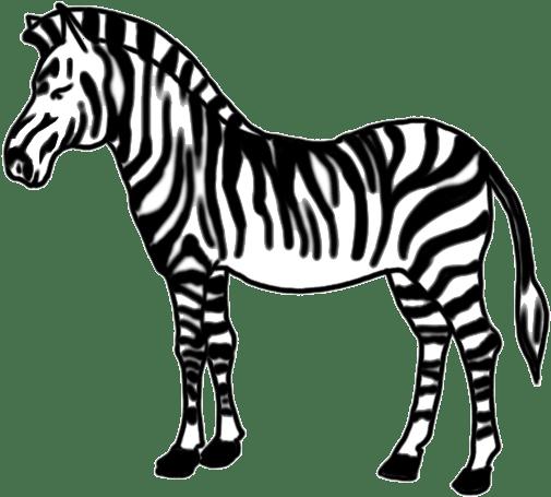 How To Draw Zebra For Kids Easy Step By Step - Zebra