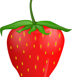 bush plant clip art strawberry plant clip art very hungry caterpillar strawberry png download [ 1336 x 1501 Pixel ]