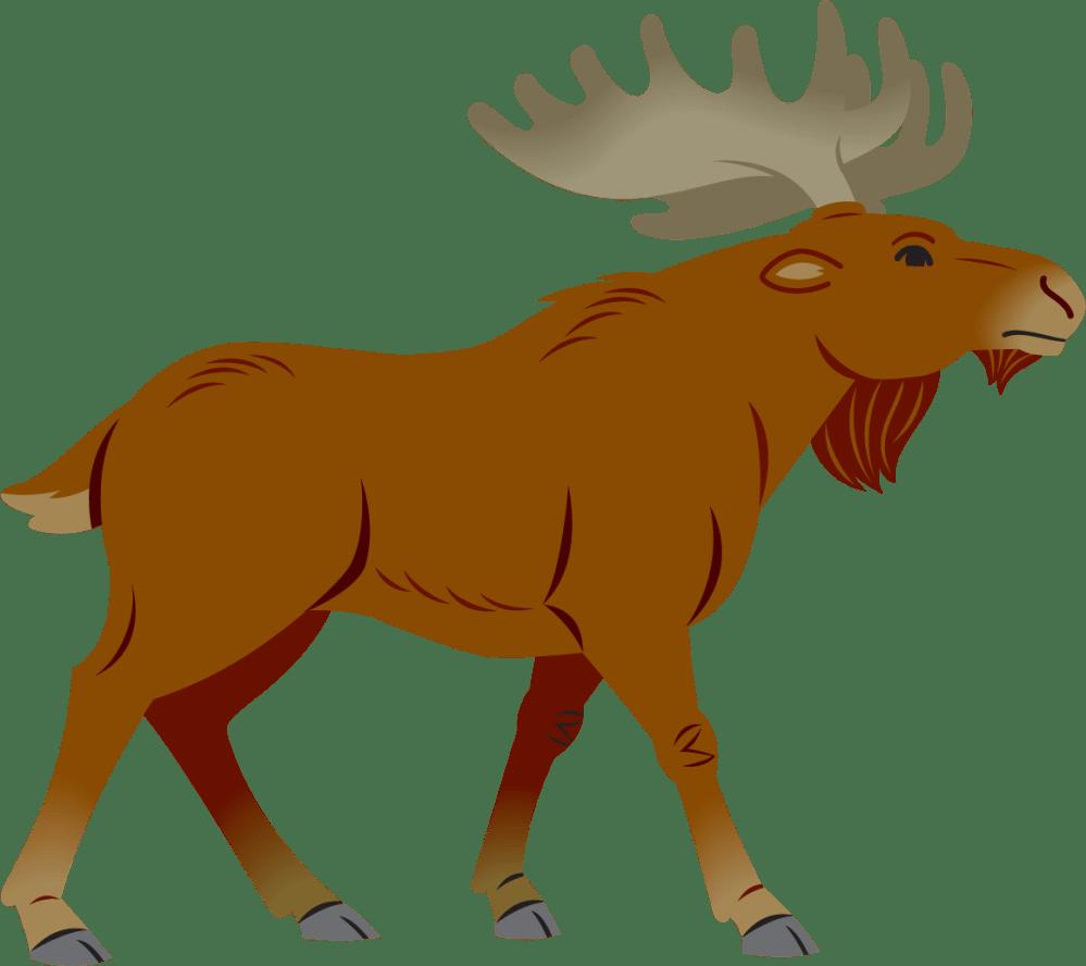 medium resolution of moose clipart moose clipart simple cartoon simple moose cartoon png download