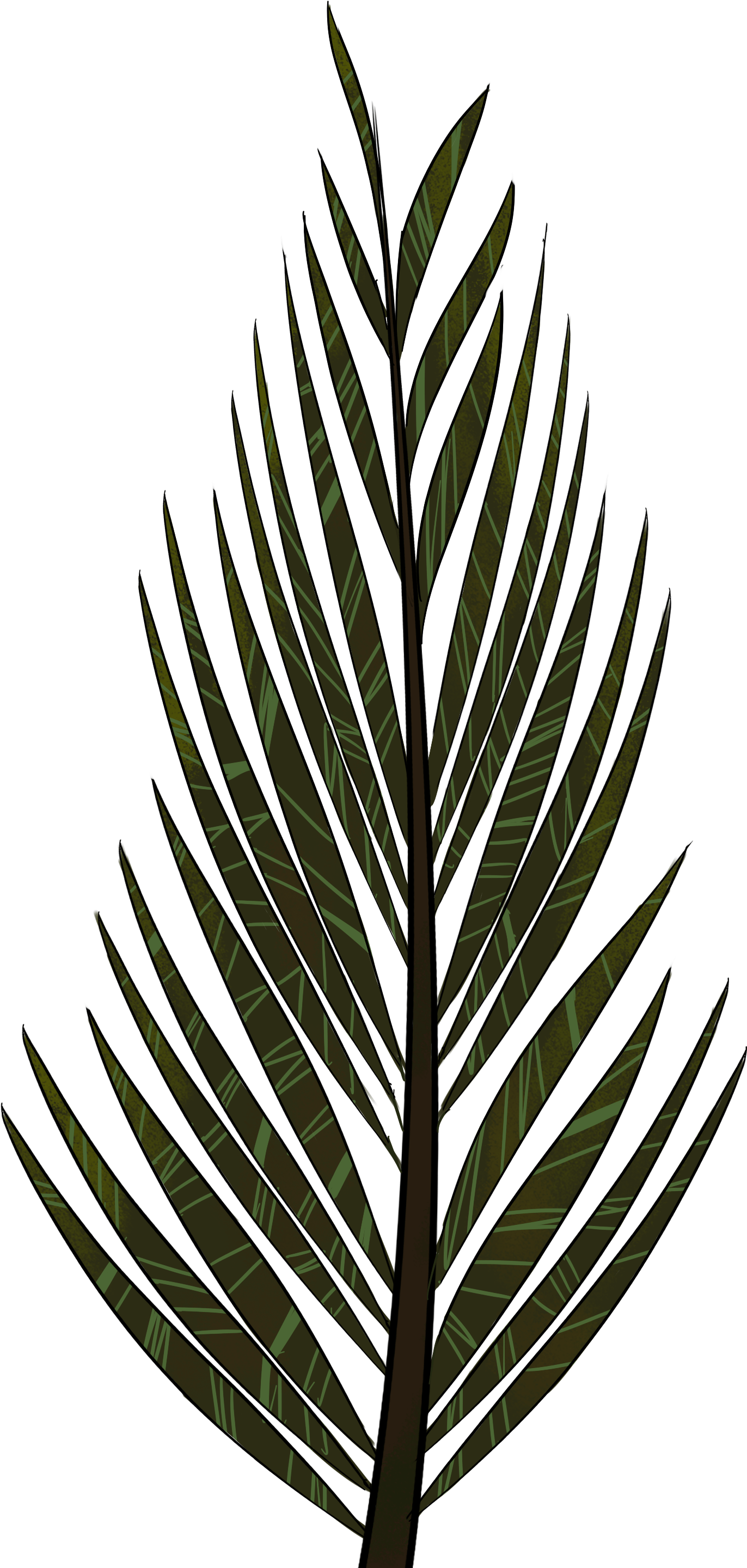 hight resolution of pine tree clip art png pine tree clipart fern tree png download