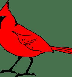 big bird clipart big image cardinal clipart png download [ 2290 x 1935 Pixel ]