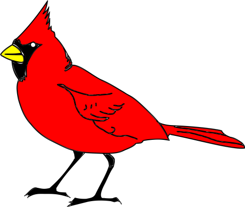 small resolution of big bird clipart big image cardinal clipart png download