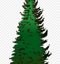 pine tree vector free download pine tree clipart png transparent png [ 880 x 1640 Pixel ]