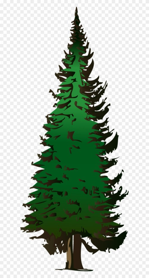 small resolution of pine tree vector free download pine tree clipart png transparent png
