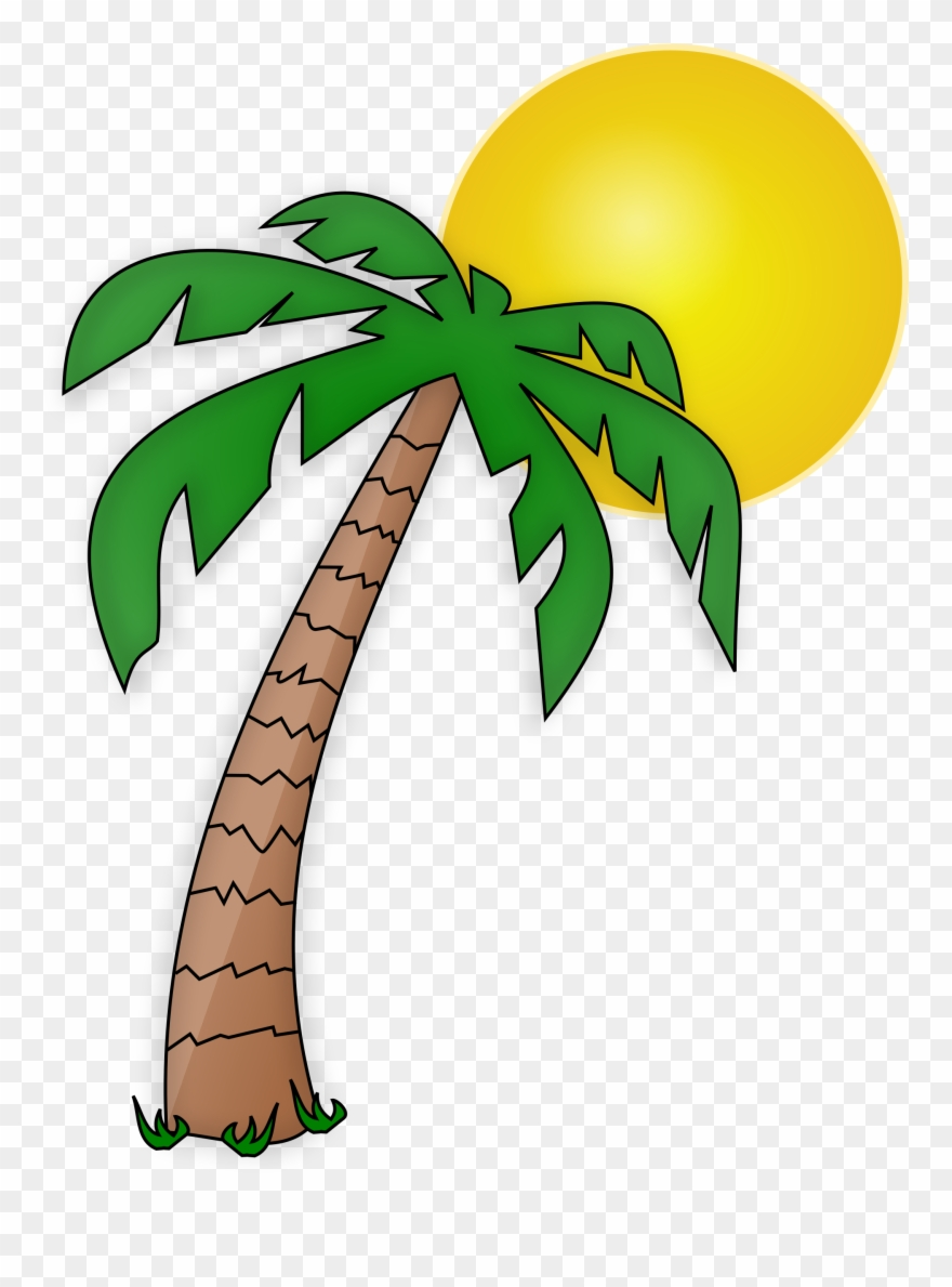 medium resolution of see here new 2018 free pictures download palm tree transparent background palm tree clipart