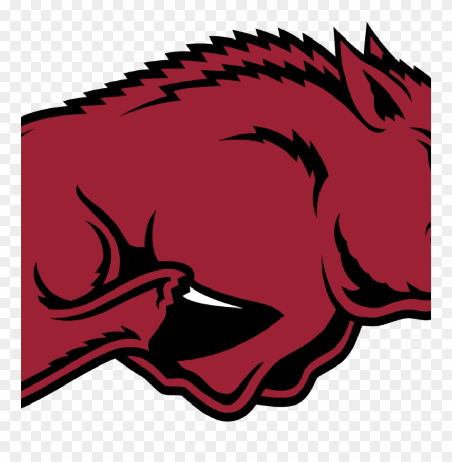 hight resolution of razorback country arkansas razorbacks wikipedia clipart arkansas razorbacks png download