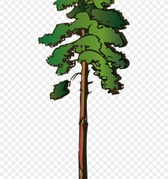 pine tree clipart png red pine tree clipart transparent png [ 880 x 1251 Pixel ]