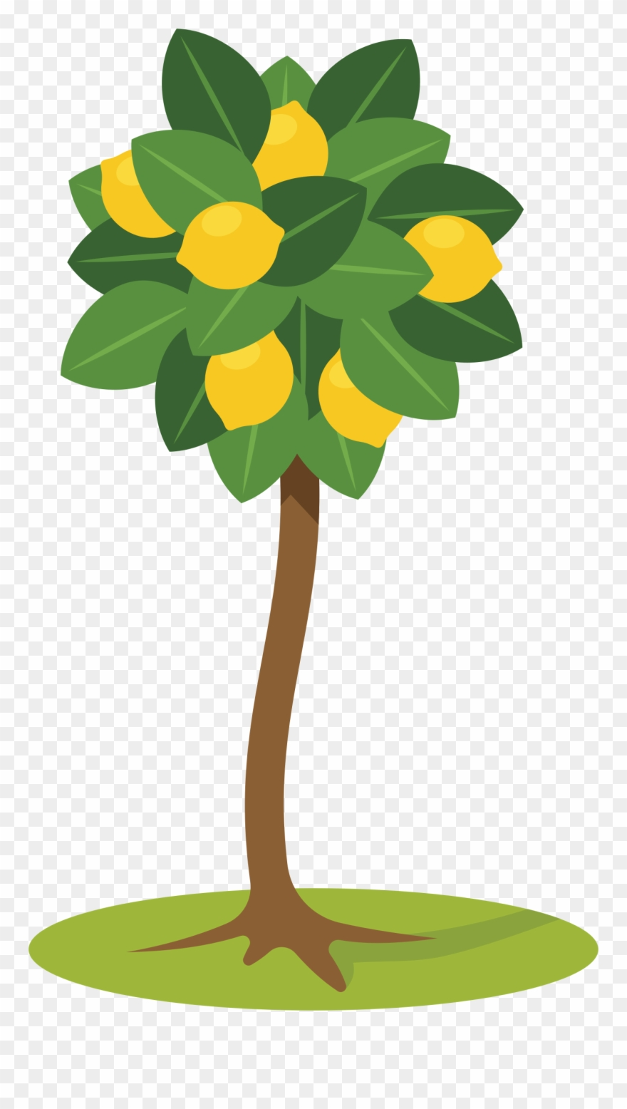 hight resolution of lemon tree clipart farm lemon tree clipart png download