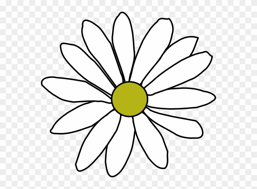 Simple Flower Outline Png Clipart 116787 Pinclipart