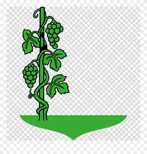 small resolution of cartoon vine clipart common grape vine clip art cartoon images of grapes plant png