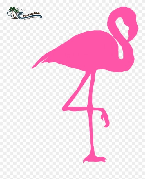 small resolution of pink flamingo cliparts co clipart flamingo png transparent png