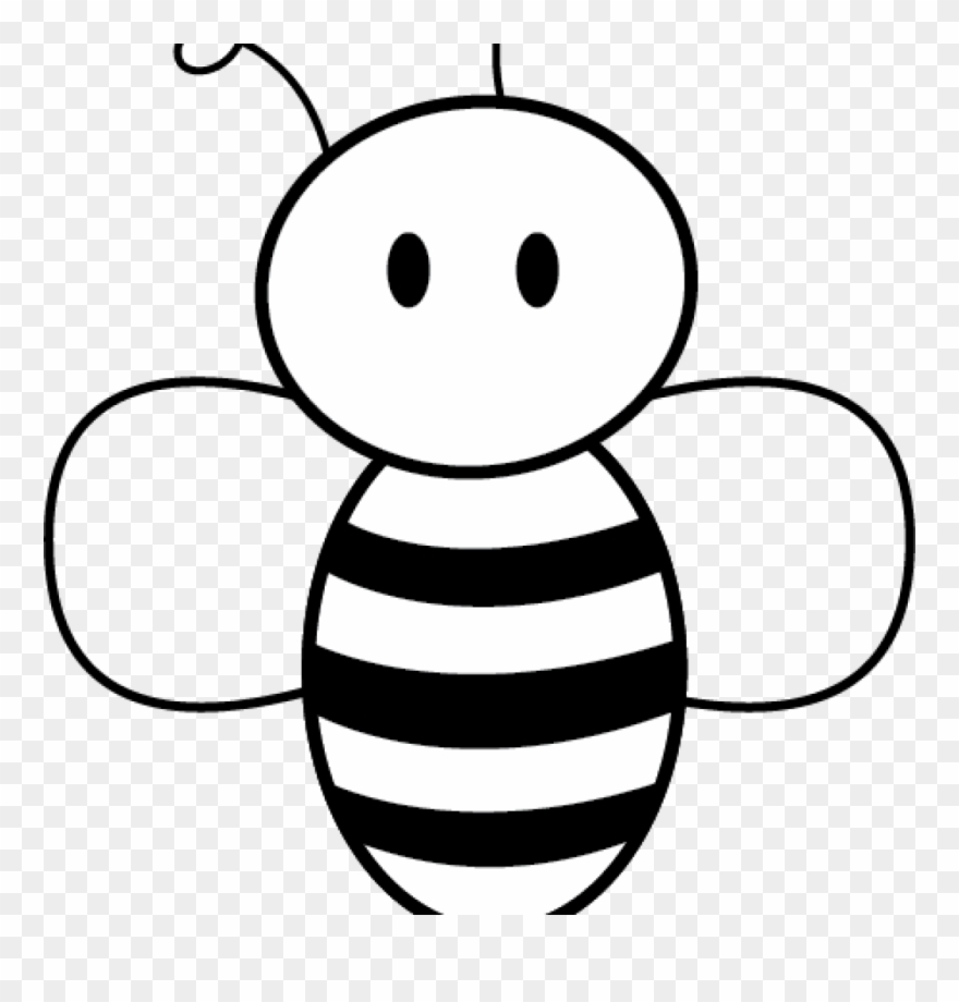 honey bee pictures clip