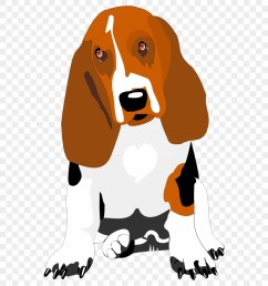 basset hound clip art png download [ 880 x 980 Pixel ]