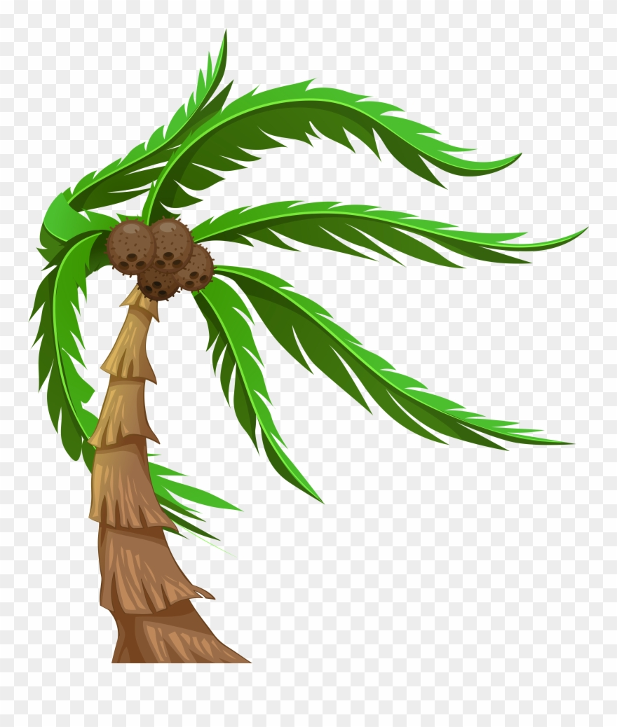 hight resolution of with coconuts transparent png clip art image coconut tree png clipart