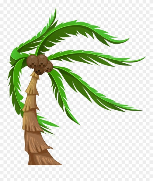 small resolution of with coconuts transparent png clip art image coconut tree png clipart