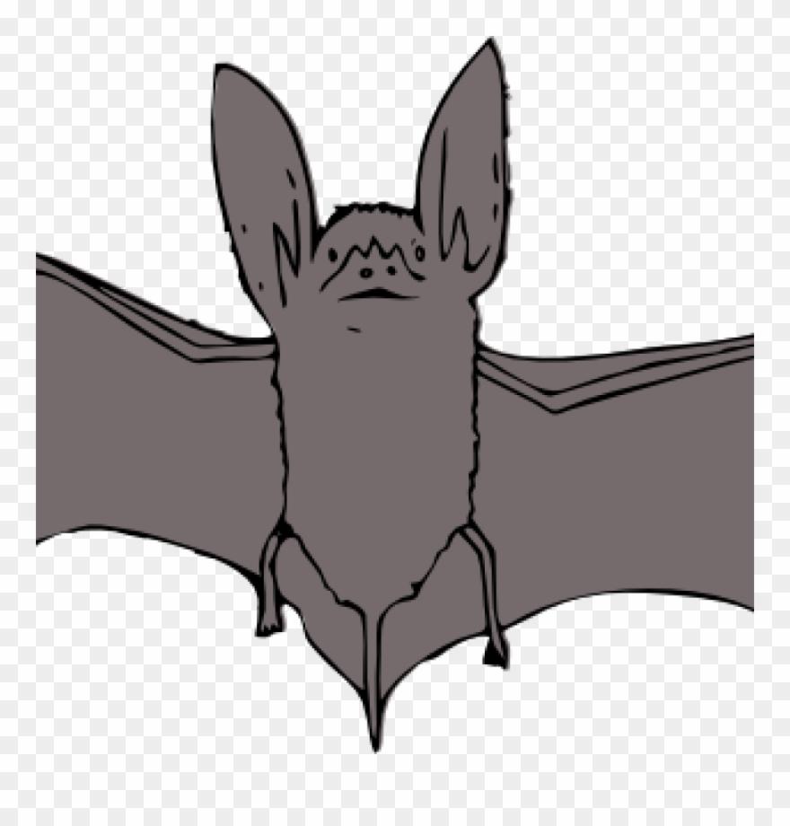medium resolution of bat clipart bat clip art at clker vector clip art online bat with open wings