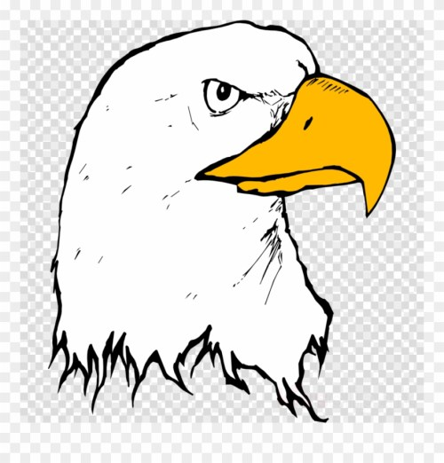 small resolution of download eagle beak clipart bald eagle clip art eagle eagle beak clipart png download