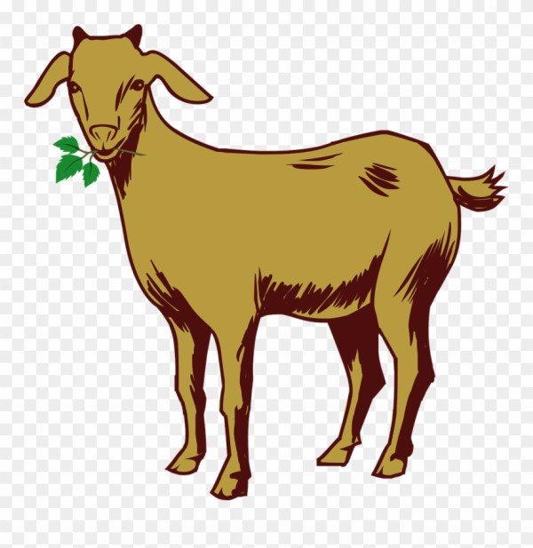 Free Goat Clipart 6 Buy Clip Art Goat Drawing With