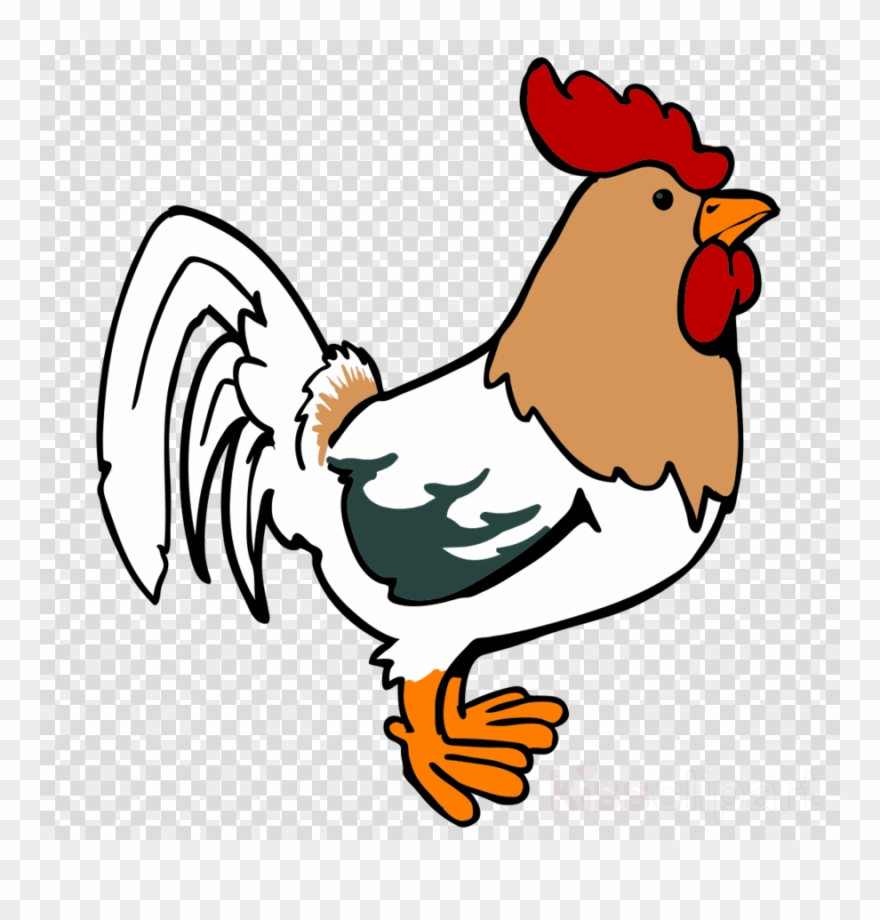 medium resolution of chicken cartoon png clipart leghorn chicken foghorn rooster cartoon png transparent png
