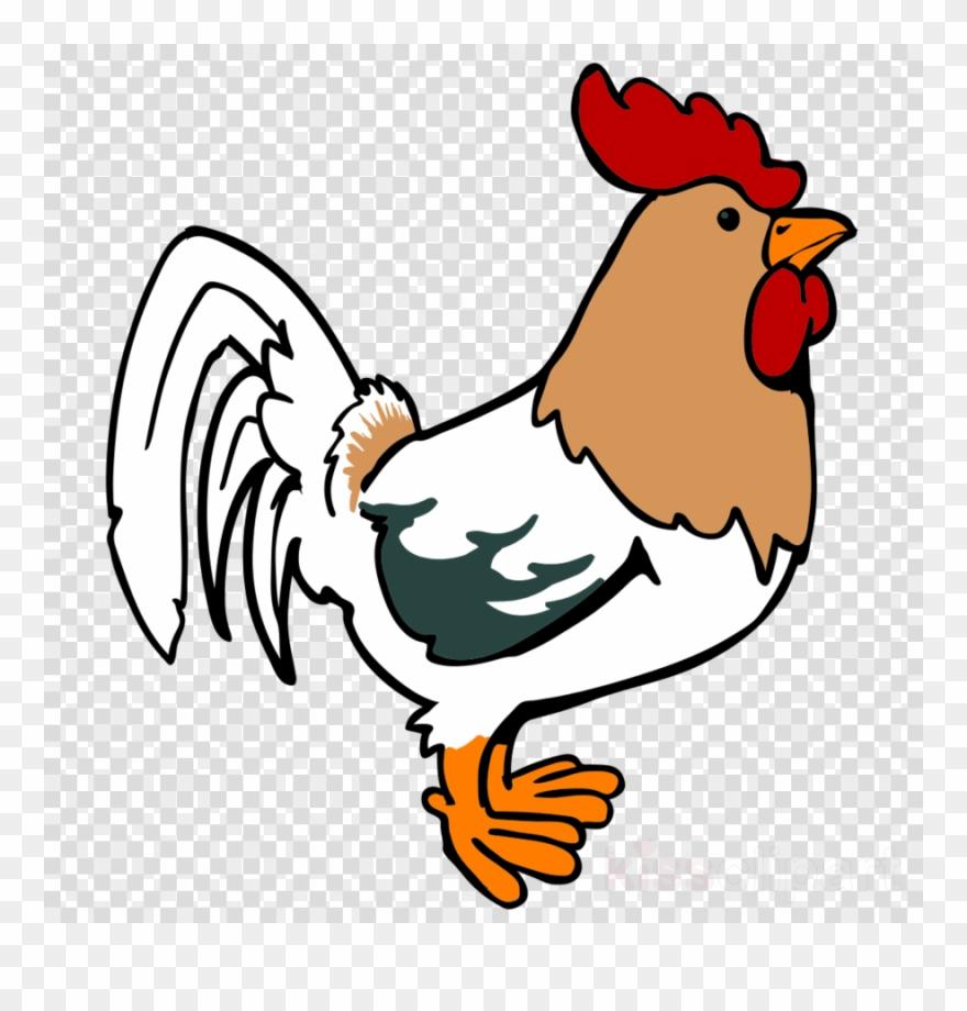 hight resolution of chicken cartoon png clipart leghorn chicken foghorn rooster cartoon png transparent png