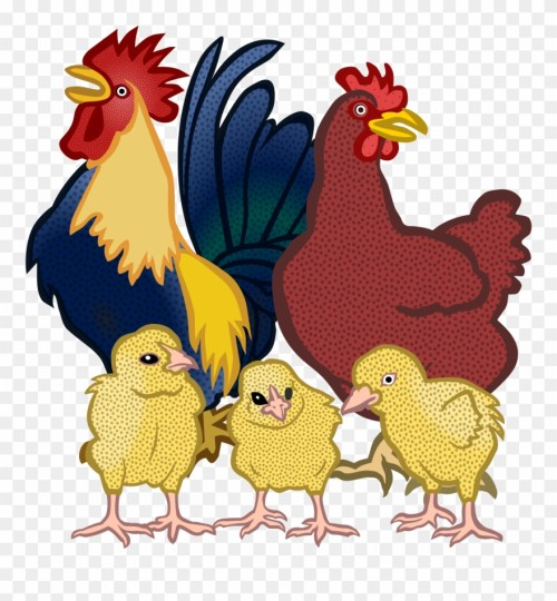 small resolution of clipart chicken real 4 sunday have a nice day good morning png download