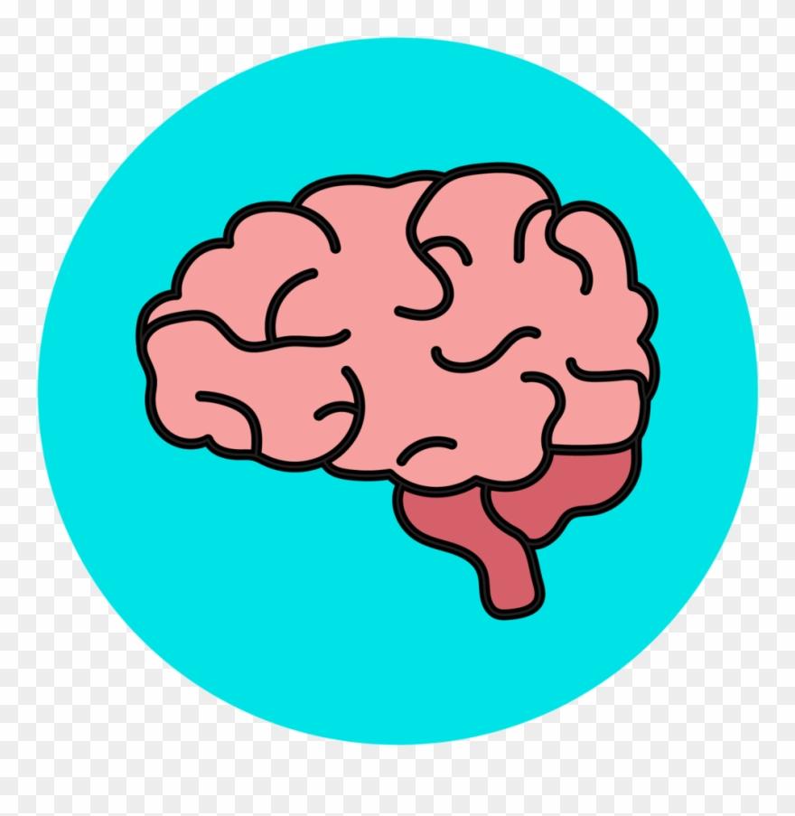 hight resolution of neuropathology and brain bank human brain clipart