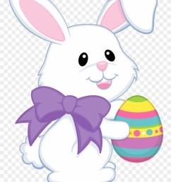 clipart best easter bunny clipart transparent png download [ 880 x 1184 Pixel ]
