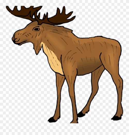 small resolution of moose clipart free moose clipart classroom clipart moose clipart png download