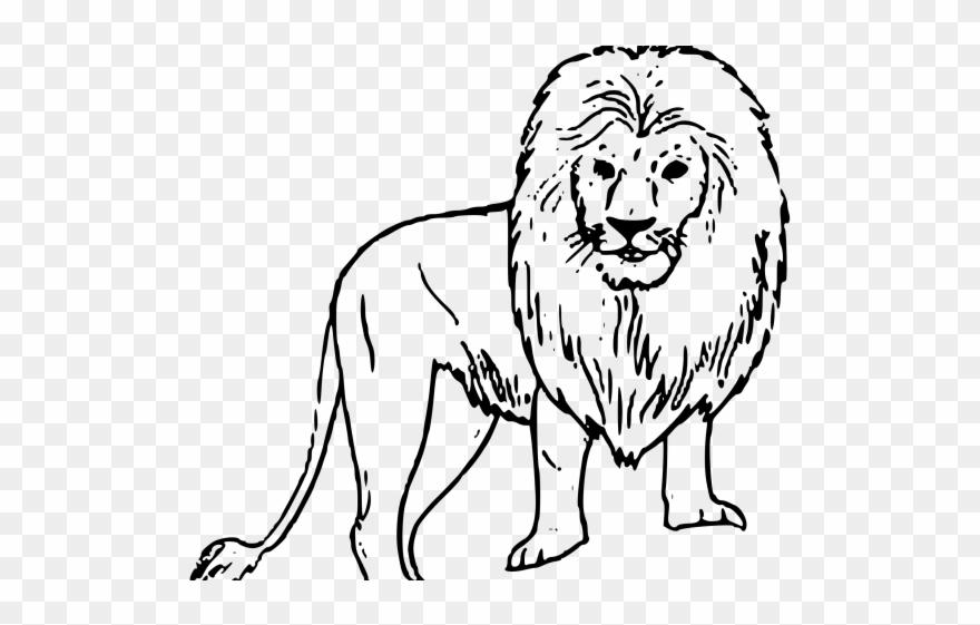 white lion clipart black