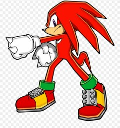 echidna clipart porcupine knuckles the echidna pose png download [ 880 x 1013 Pixel ]